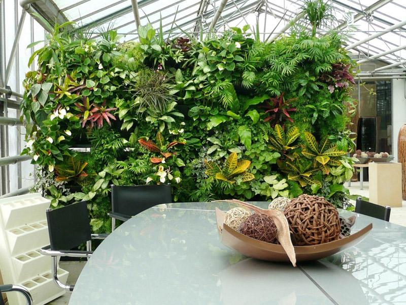Вертикальное озеленение в офисе своими руками 68